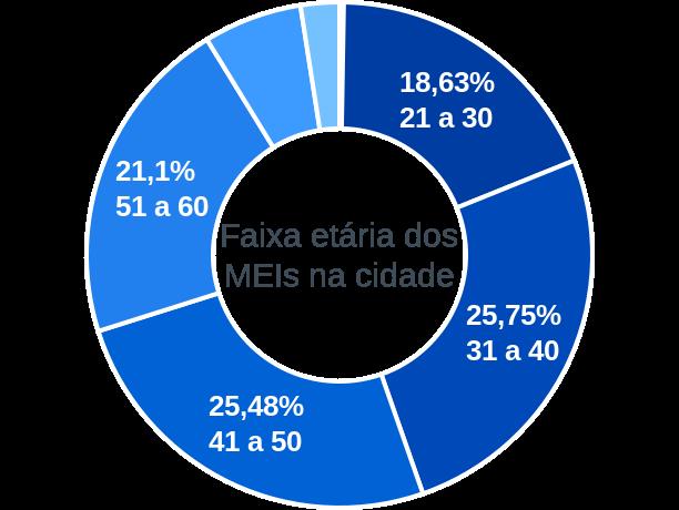 Faixa etária de MEIs na cidade de Fernando Prestes
