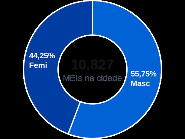 Gênero de MEIs na cidade de Ferraz de Vasconcelos