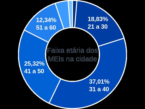 Faixa etária de MEIs na cidade de Itapirapuã Paulista