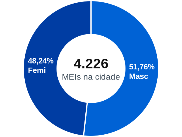 Gênero de MEIs na cidade de Jaguariúna