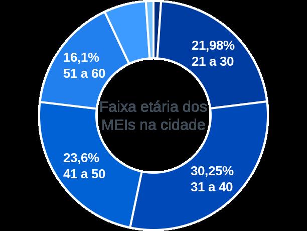 Faixa etária de MEIs na cidade de Lençóis Paulista