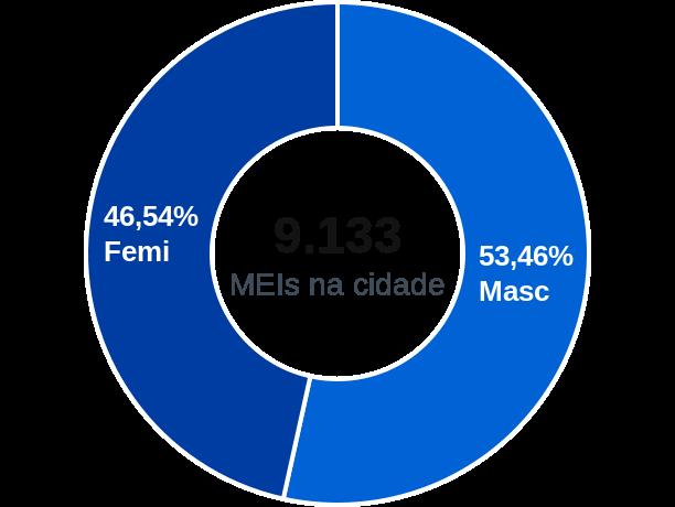 Gênero de MEIs na cidade de Mogi Guaçu