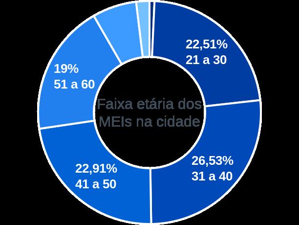 Faixa etária de MEIs na cidade de Paraguaçu Paulista