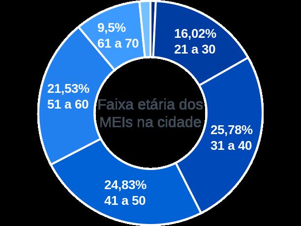 Faixa etária de MEIs na cidade de Pereira Barreto
