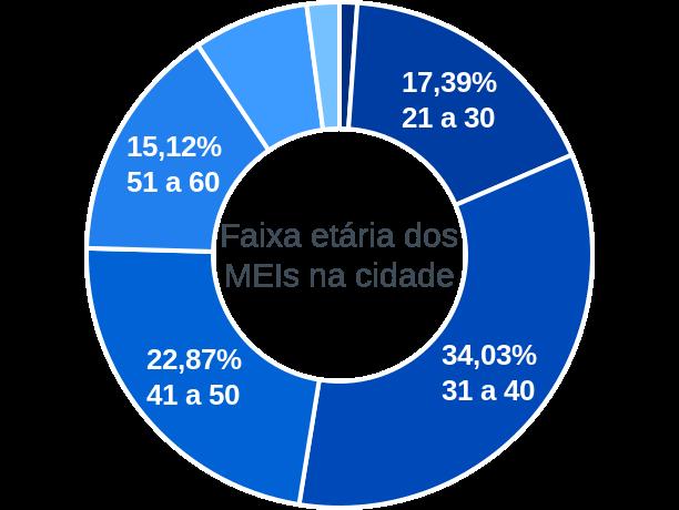 Faixa etária de MEIs na cidade de Pereiras