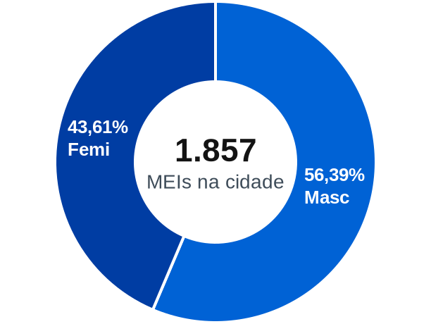 Gênero de MEIs na cidade de Piracaia