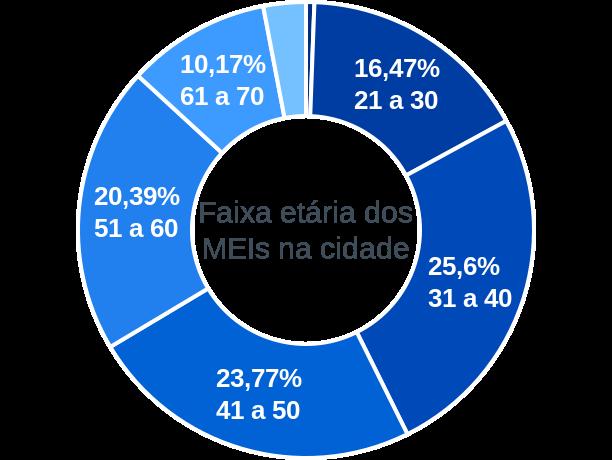 Faixa etária de MEIs na cidade de Porto Ferreira