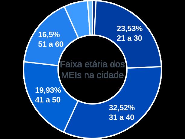 Faixa etária de MEIs na cidade de Ribeirão Bonito