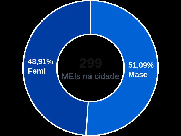 Gênero de MEIs na cidade de Ribeirão do Sul