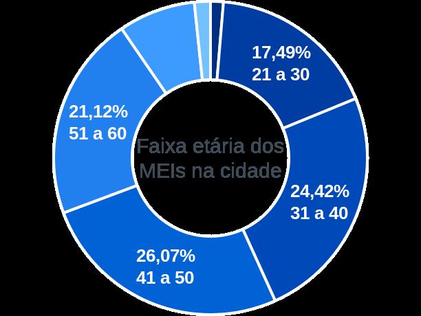 Faixa etária de MEIs na cidade de Ribeirão do Sul