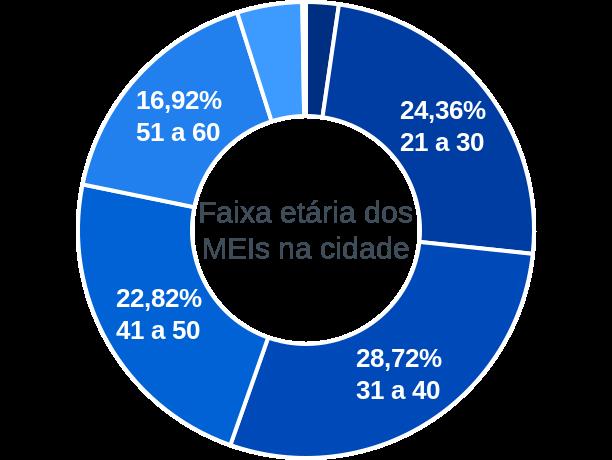 Faixa etária de MEIs na cidade de Ribeirão Grande