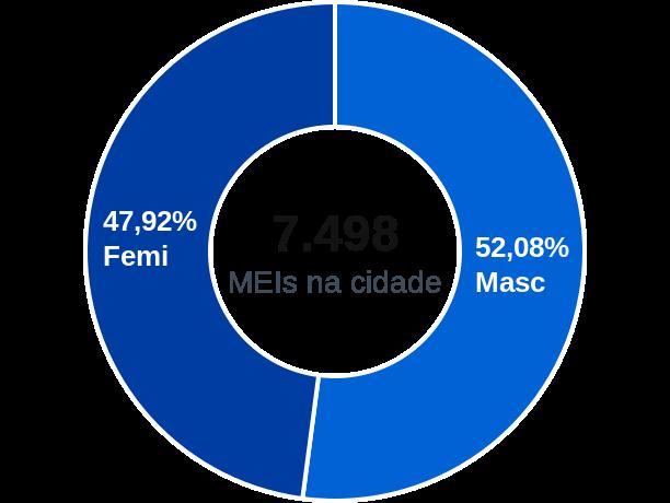 Gênero de MEIs na cidade de Ribeirão Pires