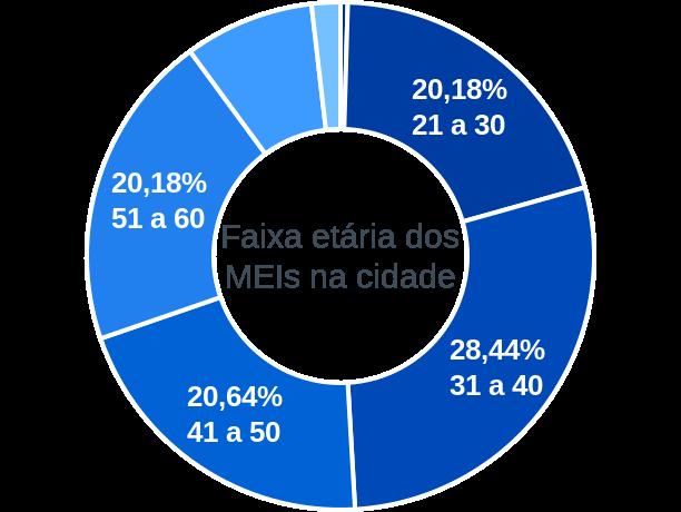 Faixa etária de MEIs na cidade de Salmourão