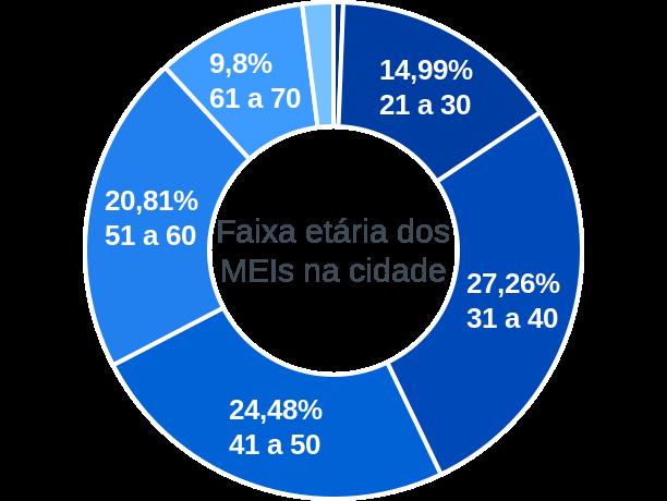 Faixa etária de MEIs na cidade de Santa Rita do Passa Quatro