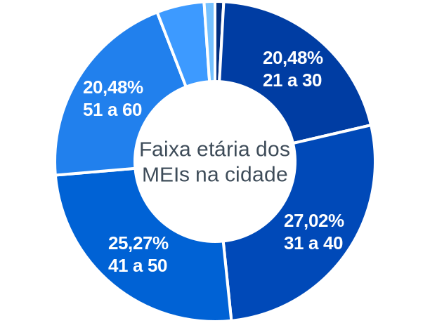 Faixa etária de MEIs na cidade de Santo Antônio do Aracanguá