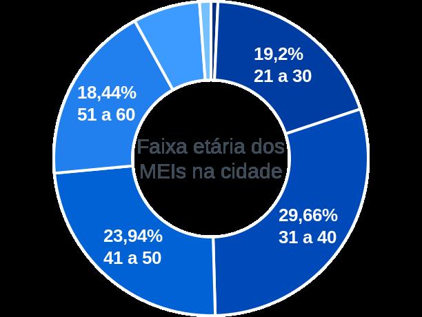 Faixa etária de MEIs na cidade de São João da Boa Vista