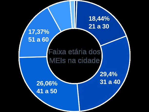 Faixa etária de MEIs na cidade de São Joaquim da Barra