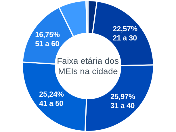 Faixa etária de MEIs na cidade de São José do Barreiro