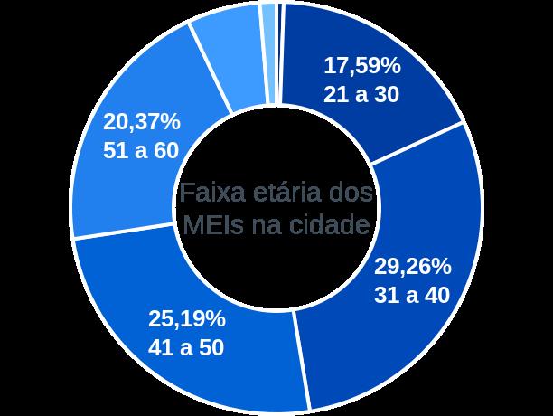 Faixa etária de MEIs na cidade de São Luiz do Paraitinga