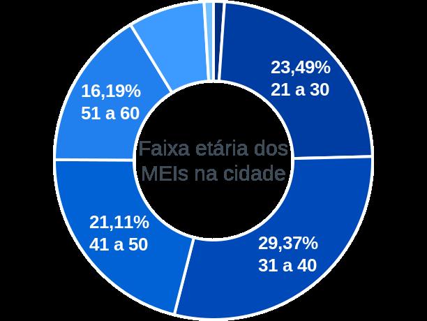 Faixa etária de MEIs na cidade de Serra Azul