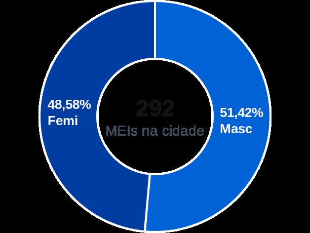 Gênero de MEIs na cidade de Silveiras