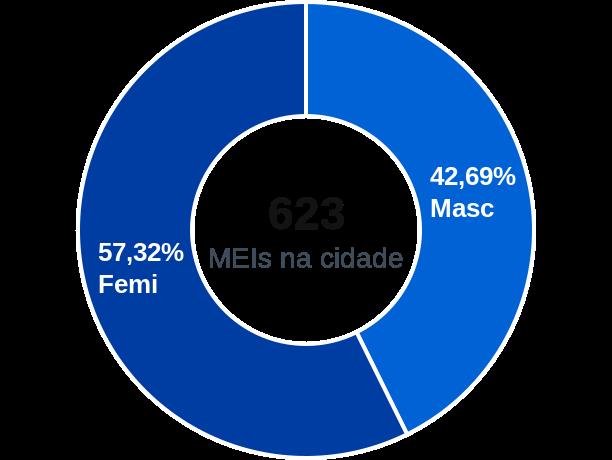 Gênero de MEIs na cidade de Sud Mennucci