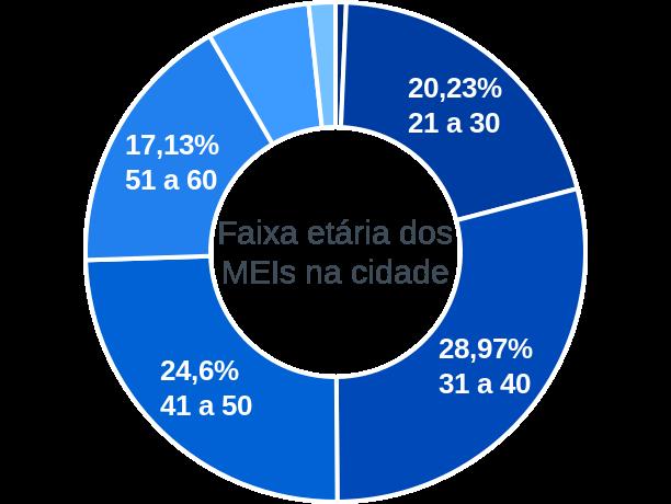 Faixa etária de MEIs na cidade de Tupi Paulista
