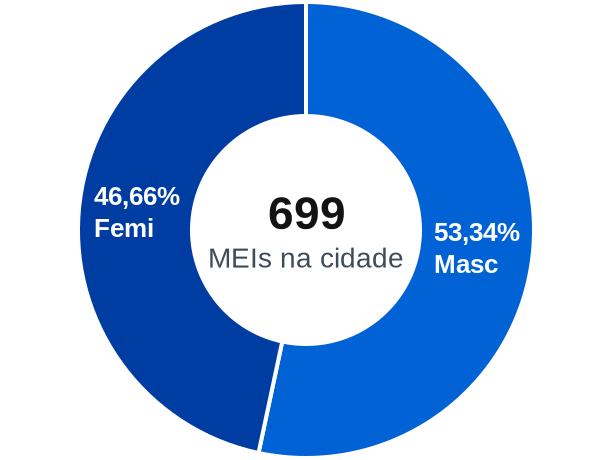 Gênero de MEIs na cidade de Augustinópolis