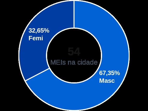 Gênero de MEIs na cidade de Brasilândia do Tocantins