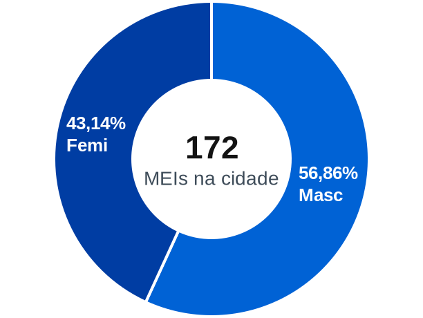 Gênero de MEIs na cidade de Couto Magalhães