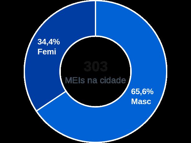 Gênero de MEIs na cidade de Nova Olinda