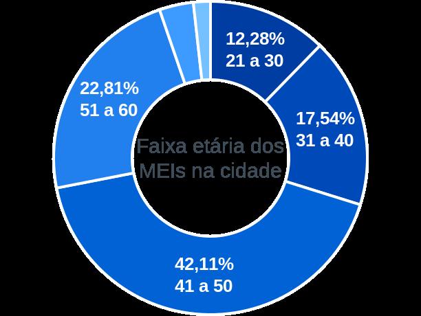 Faixa etária de MEIs na cidade de Novo Alegre