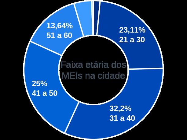 Faixa etária de MEIs na cidade de Ponte Alta do Tocantins
