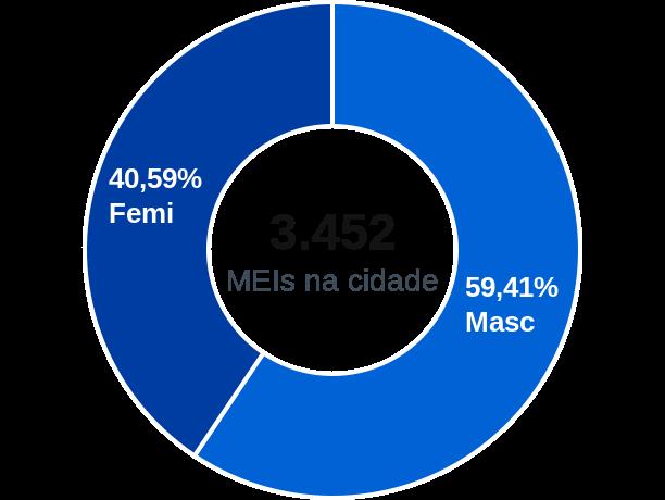Gênero de MEIs na cidade de Porto Nacional