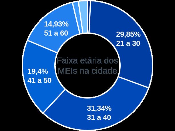Faixa etária de MEIs na cidade de Rio Sono