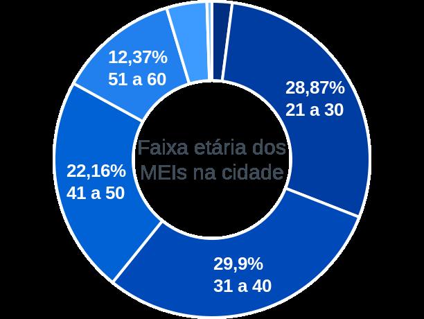 Faixa etária de MEIs na cidade de Santa Fé do Araguaia