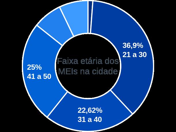 Faixa etária de MEIs na cidade de São Sebastião do Tocantins